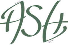 Ash ambigram
